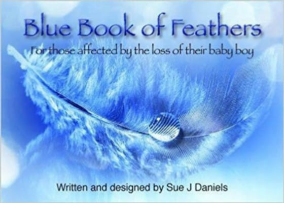 Blue Book of Feathers Booklet Sue J. Daniels